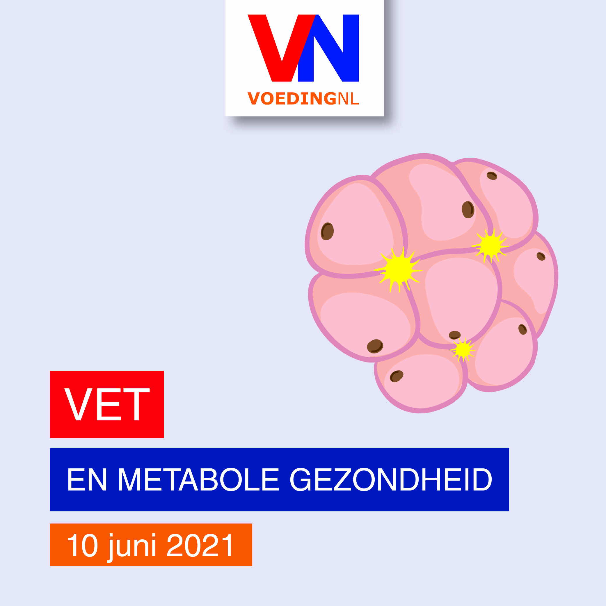 https://www.voedingnl.nl/